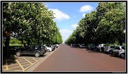 Greenwich94.jpg
