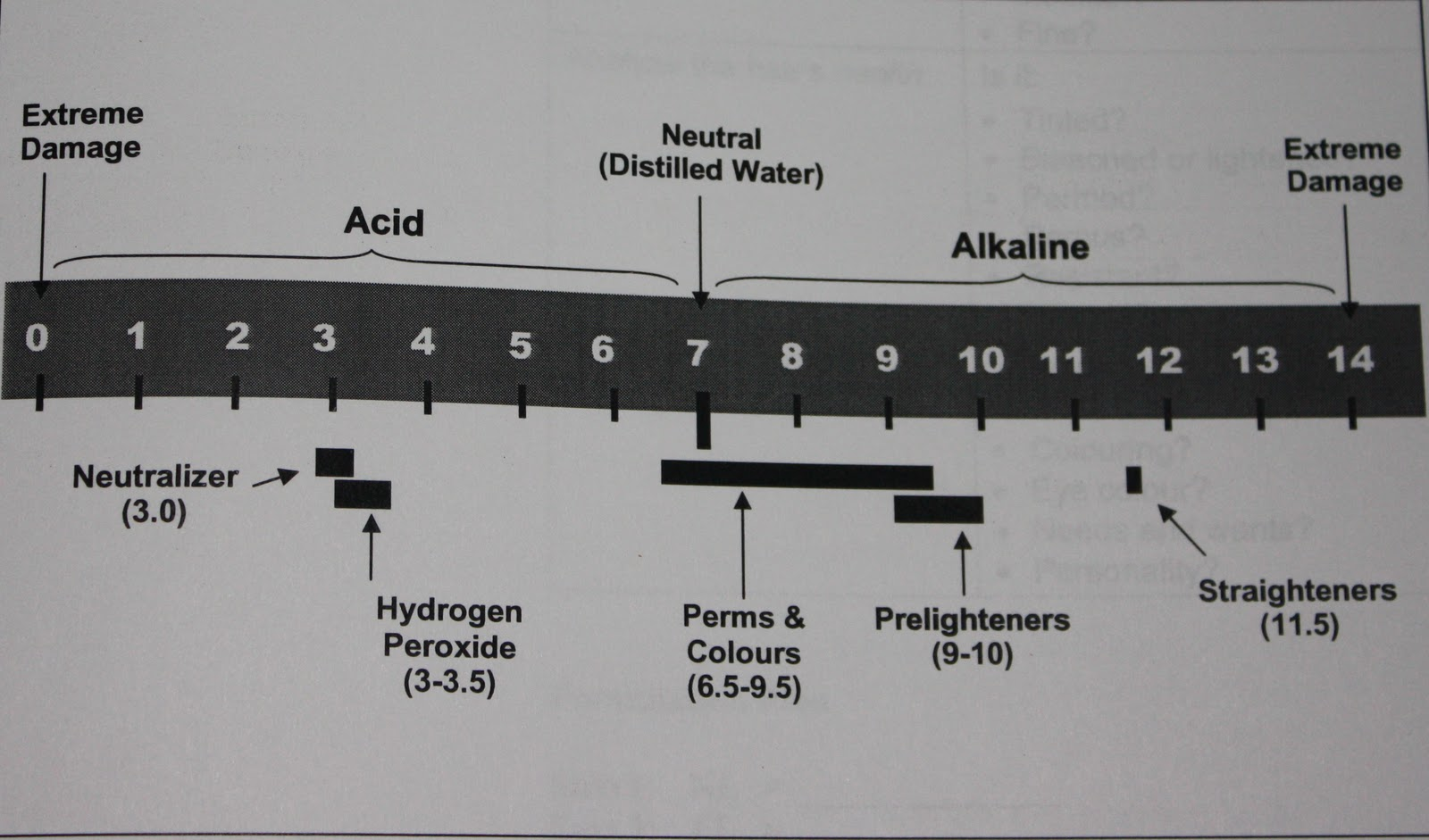 Hair Structure Hair Colour Molecules And Ph Back2MyRoots