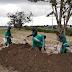 PREFEITURA REALIZA PLANTIO E DISTRIBUIÇÃO DE MUDAS AO DIA DA ÁRVORE NA AMAZÔNIA