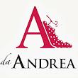 Andrea M