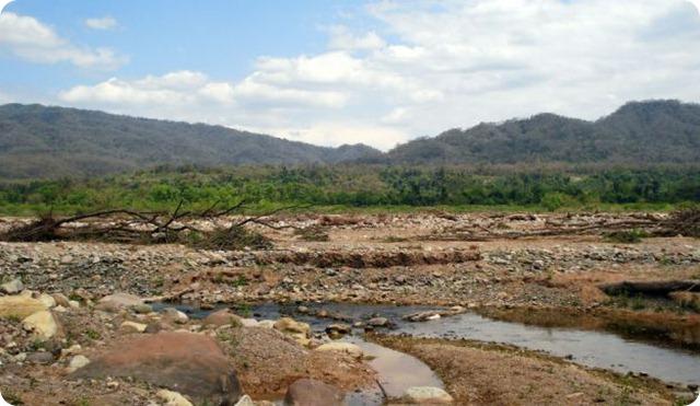 Parque-Nacional-Calilegua