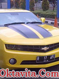 Mobil Raffi Bumble Bee Transformers