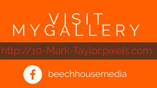 Mark Taylor artist Pixels gallery