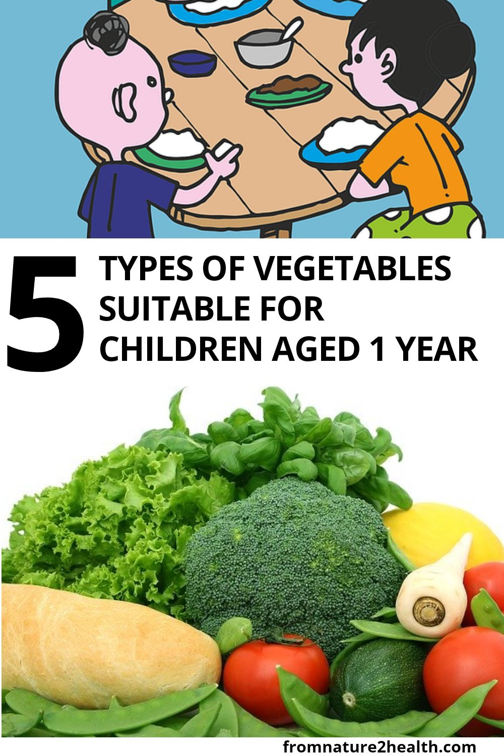 5 Types of Vegetables Suitable for Children Aged 1 Year 5 Types of Vegetables Suitable for Children Aged 1 Year