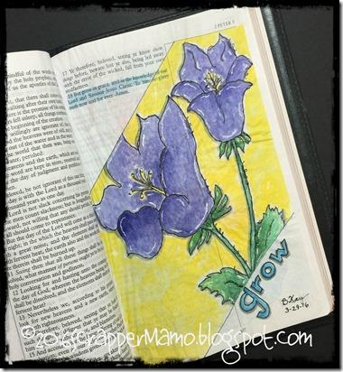 Bible Art 2Peter 3-18 Grow in grace