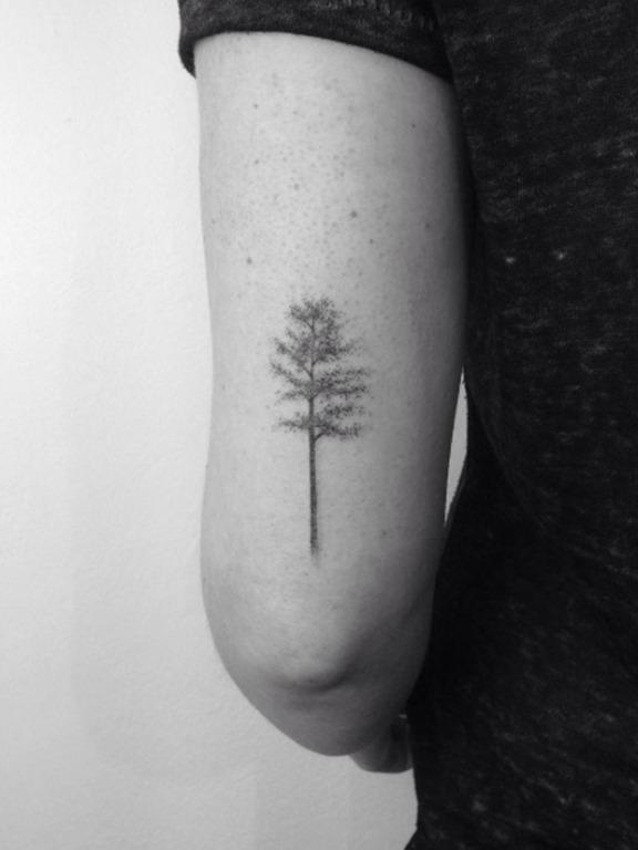 Esta árvore