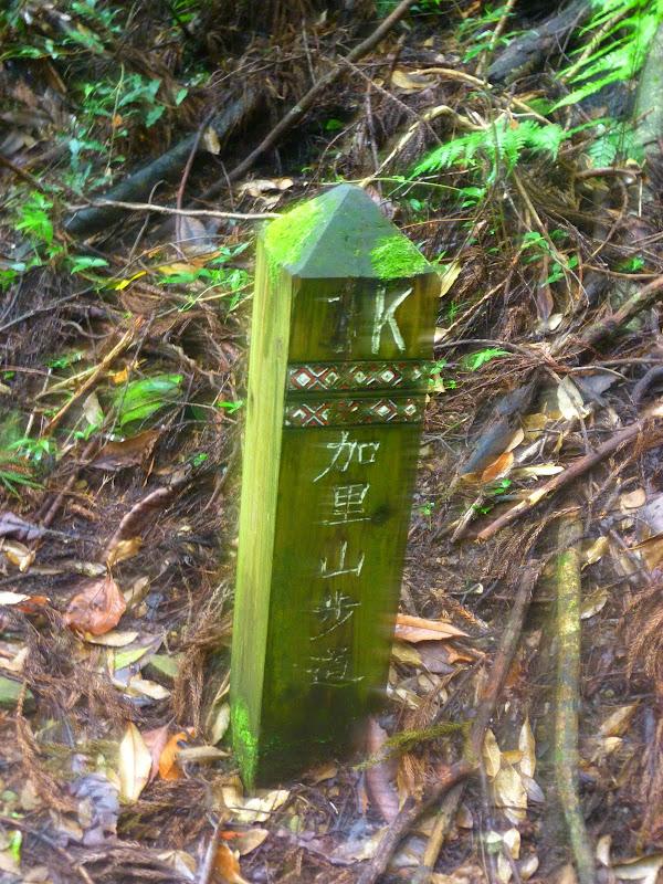 Petite randonnée au sud de Taufen, dans la région de Miaoli - P1330611.JPG