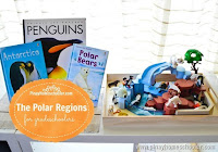 The Polar Regions for Grade-Schoolers