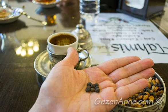 menengiç kahvesinin yapıldığı yaban fıstıklar, Tahmis kahvesi Gaziantep