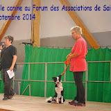 Le Forum 2014 des Associations de SAINT VRAIN