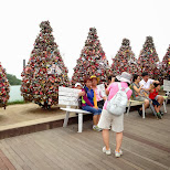 love exposition at view from N Seoul tower in Korea in Seoul, Seoul Special City, South Korea