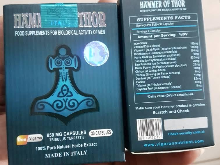 jual hammer forex promo herbal medicine store