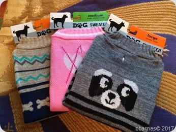 Doggie sweaters 12012017
