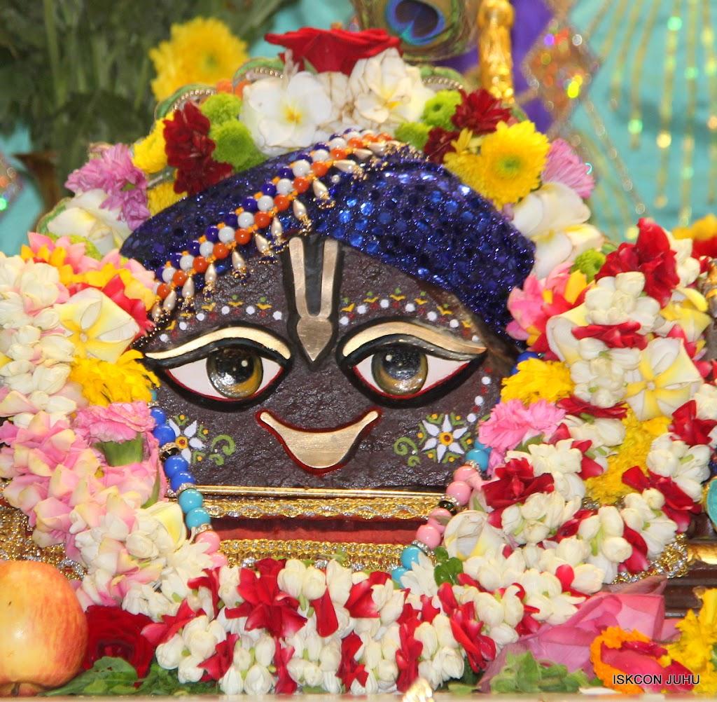 ISKCON Juhu Sringar Deity Darshan on 24th July 2016 (13)