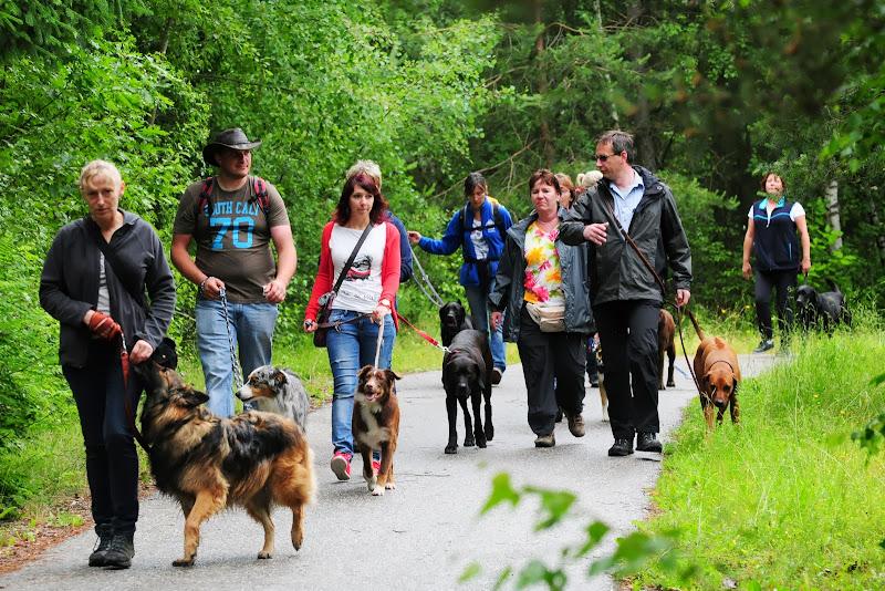 20130623 Erlebnisgruppe in Steinberger See (von Uwe Look) - DSC_3687.JPG