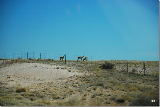 04-14-16 A Alamogordo-Border 54-40-54 (183)