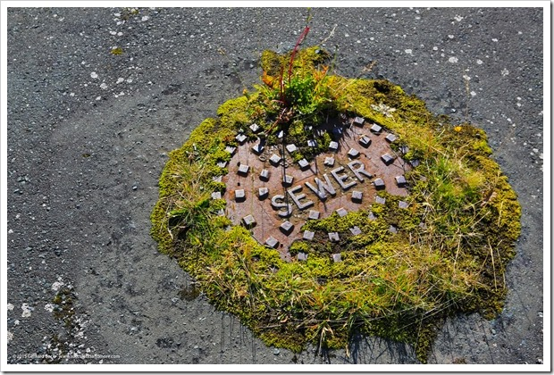 150910_Adak_sewer_cover_WM