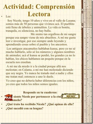 pueblos-originarios-de-chile-15-728