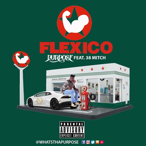Purpose Flexico