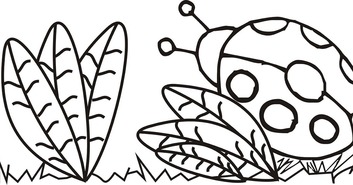 Desenho Joaninha ~ Desenhos para colorir Pinte esse desenho de Joaninha com muito carinho Risco para pano de prato
