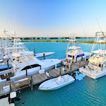 Hawks Cay Resort - hawks-cay-marina.600x0.jpg