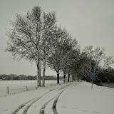 Sneeuw 2014