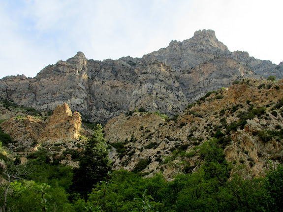 Squaw Peak and the north wall of Rock Canyon