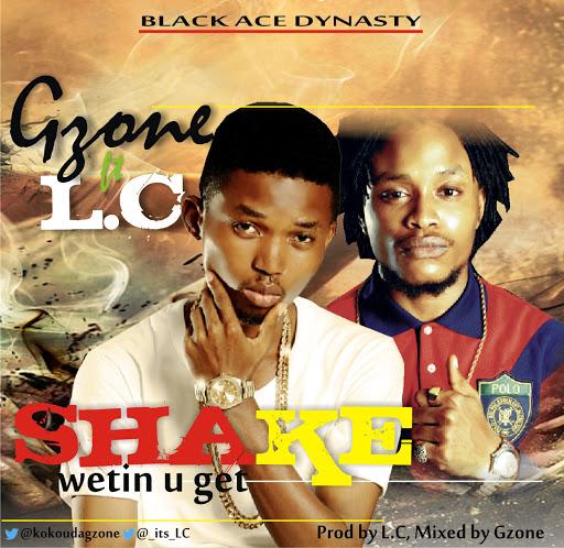 Gzone ft LC - shake album art