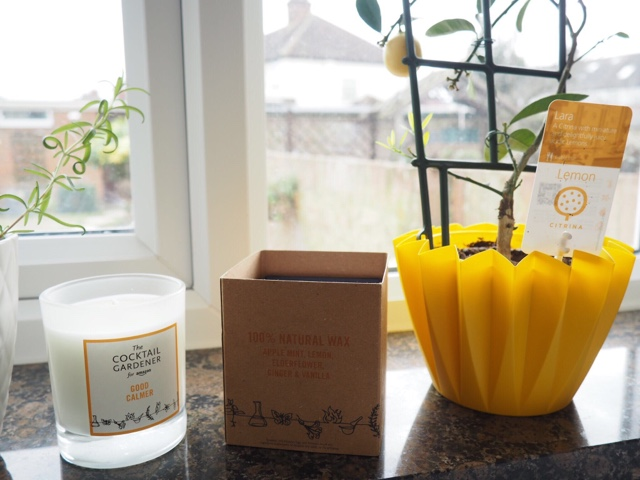 good-calmer-candle-by-the-cocktail-gardener-2