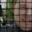 J.O. Aho's profile photo