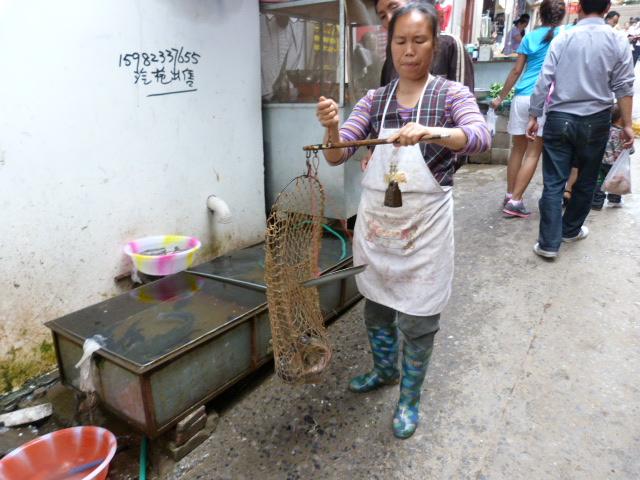 CHINE.SICHUAN.LEI BO,petite ville , escale pour aller à XI CHANG - 1sichuan%2B623.JPG