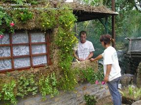 maison végétale à la pépinière grangier