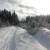 Ski dans les Fagnes