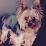 Yvette M. Van Burch's profile photo