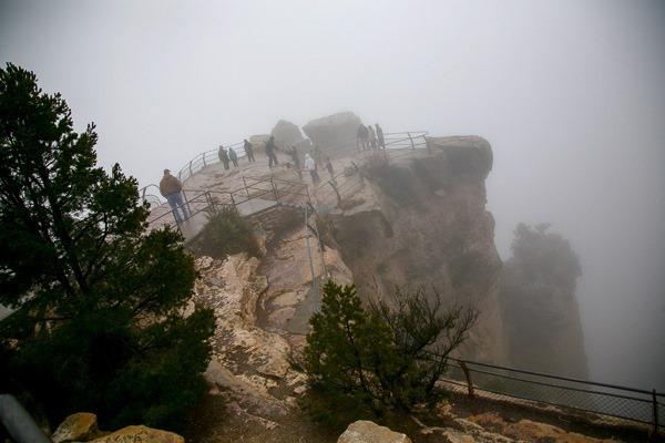 10-grand cyn fog