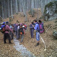 Jesenovanje, Črni Dol - photo25.jpg