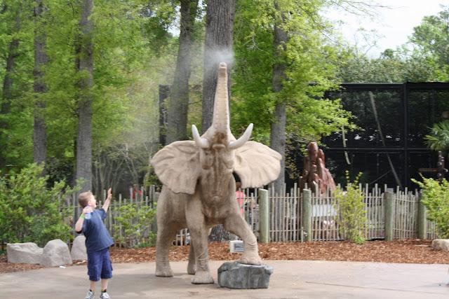 Zoo Snooze 2015 - IMG_7281.JPG