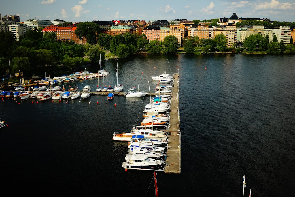 Stockholm walking tour Norrmälarstrand - Stadshuset - T-Centralen - Strandgvägen - Djurgården
