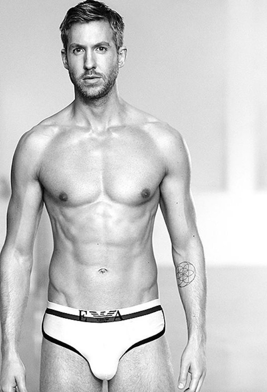 Calvin Harris in EA Briefs