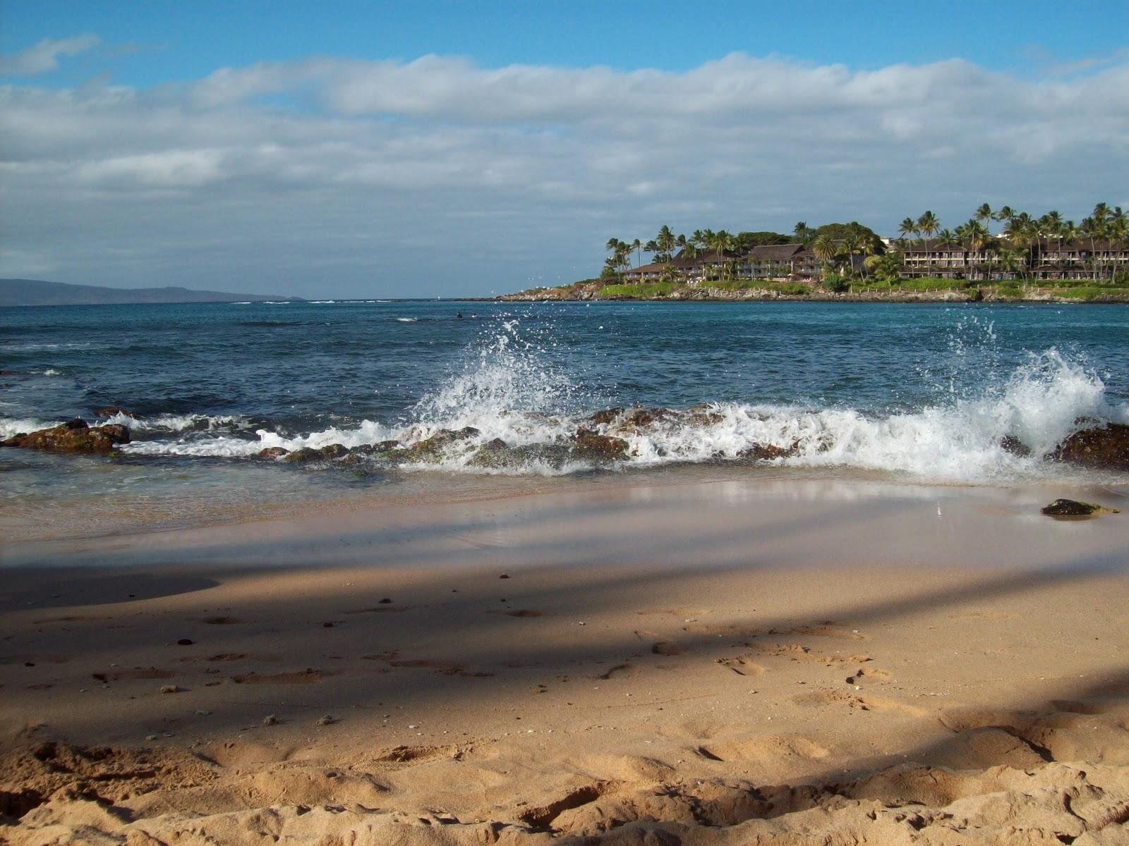 Hawaii Day 7 - 114_2016.JPG