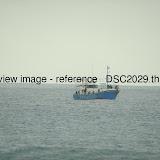 _DSC2029.thumb.jpg