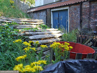 Primary colours, in a favourite forgotten corner. Behind the engine house, Aug 2007