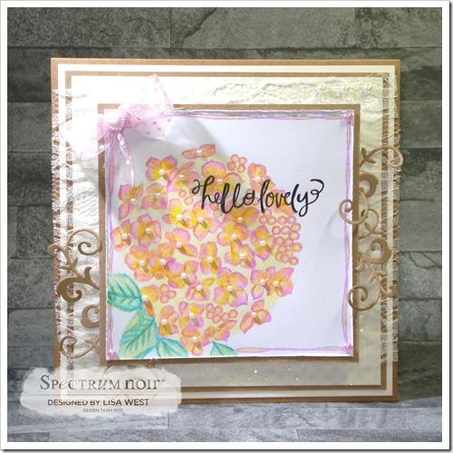 Hydrangea Bloom (2)
