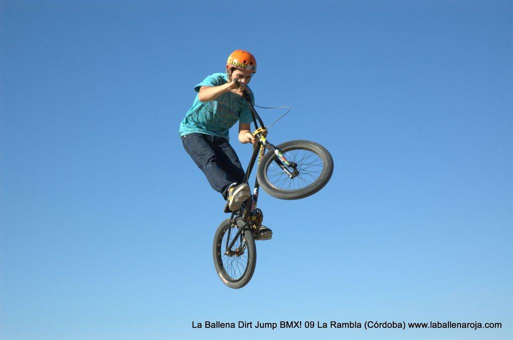 Ballena Dirt Jump BMX 2009 - BMX_09_0046.jpg
