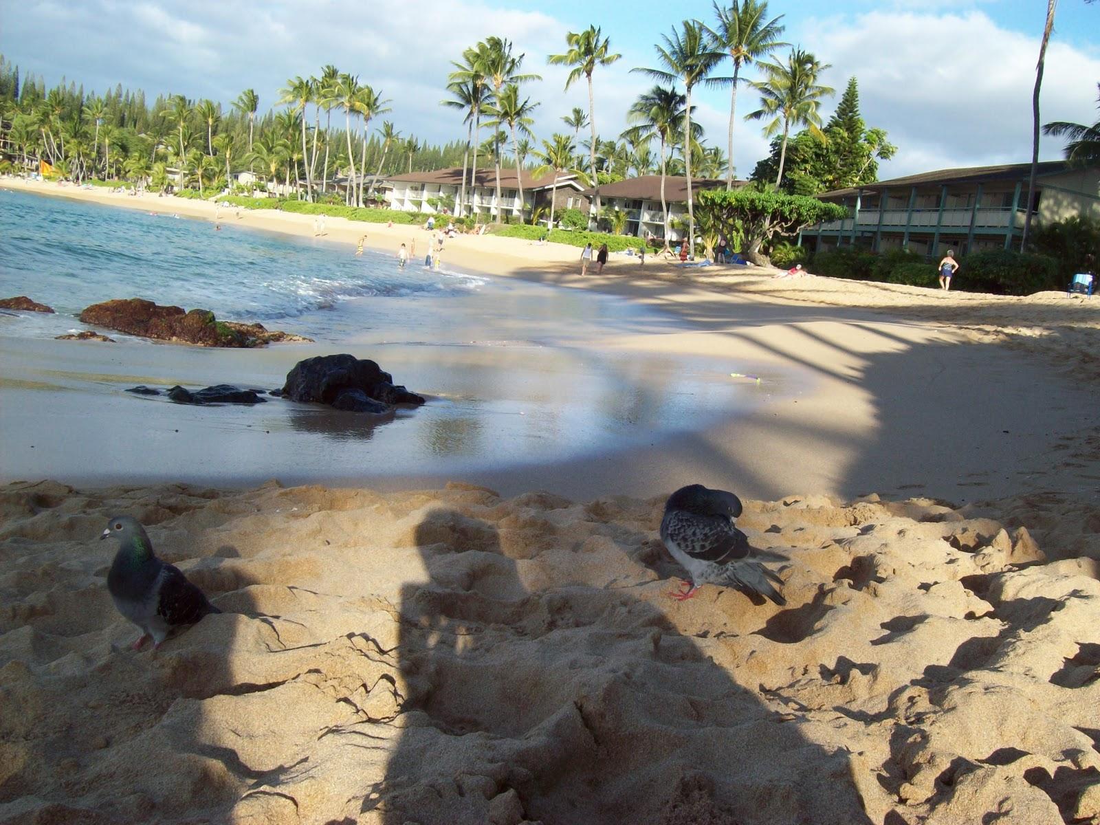 Hawaii Day 7 - 100_7957.JPG