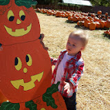 Pumpkin Patch - 114_6548.JPG