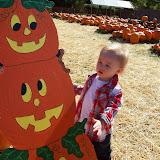 Pumpkin Patch - 114_6548.JPG