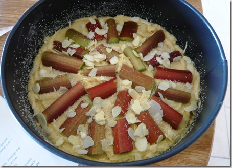 rhubarb and almond cake2