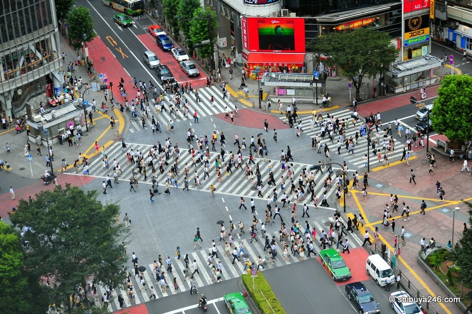 shibuya-crossing-15