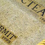 Chapelle Saint-Blaise-des-Simples : pierre tombale